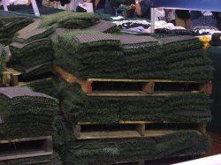 2011 Rays Fan Fest 005.JPG