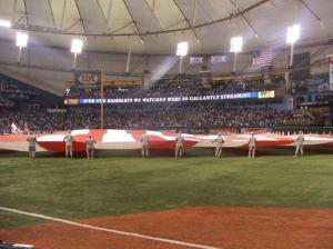 Flag2009