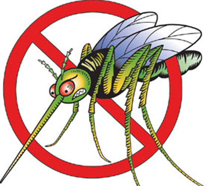 mosquito-clipart-6