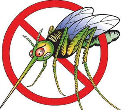 mosquito-clipart-6